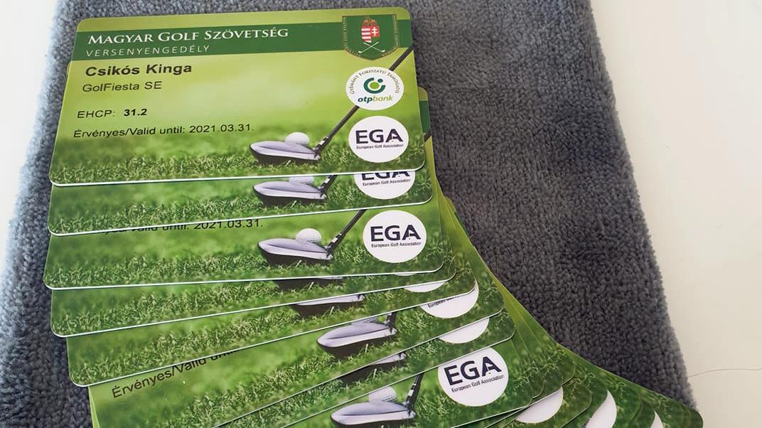 Megérkeztek az EGA kártyák!
